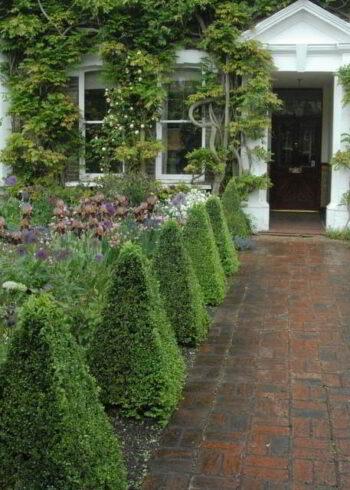 Топиарии для сада своими руками